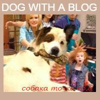Собака точка ком Все серии